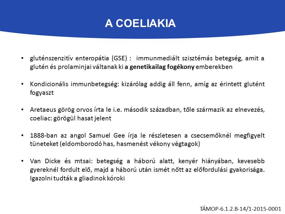 A COELIAKIA TÁMOP-6.1.2.B-14/1-2015-0001 gluténszenzitív enteropátia (GSE) : immunmediált szisztémás betegség, amit a glutén és prolaminjai váltanak ki a genetikailag fogékony emberekben Kondicionális immunbetegség: kizárólag addig áll fenn, amíg az érintett glutént fogyaszt Aretaeus görög orvos írta le i.e.