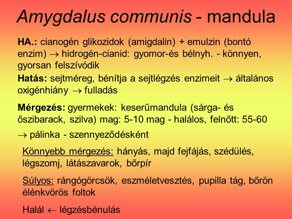 Amygdalus communis - mandula HA.: cianogén glikozidok (amigdalin) + emulzin (bontó enzim)  hidrogén-cianid: gyomor-és bélnyh.