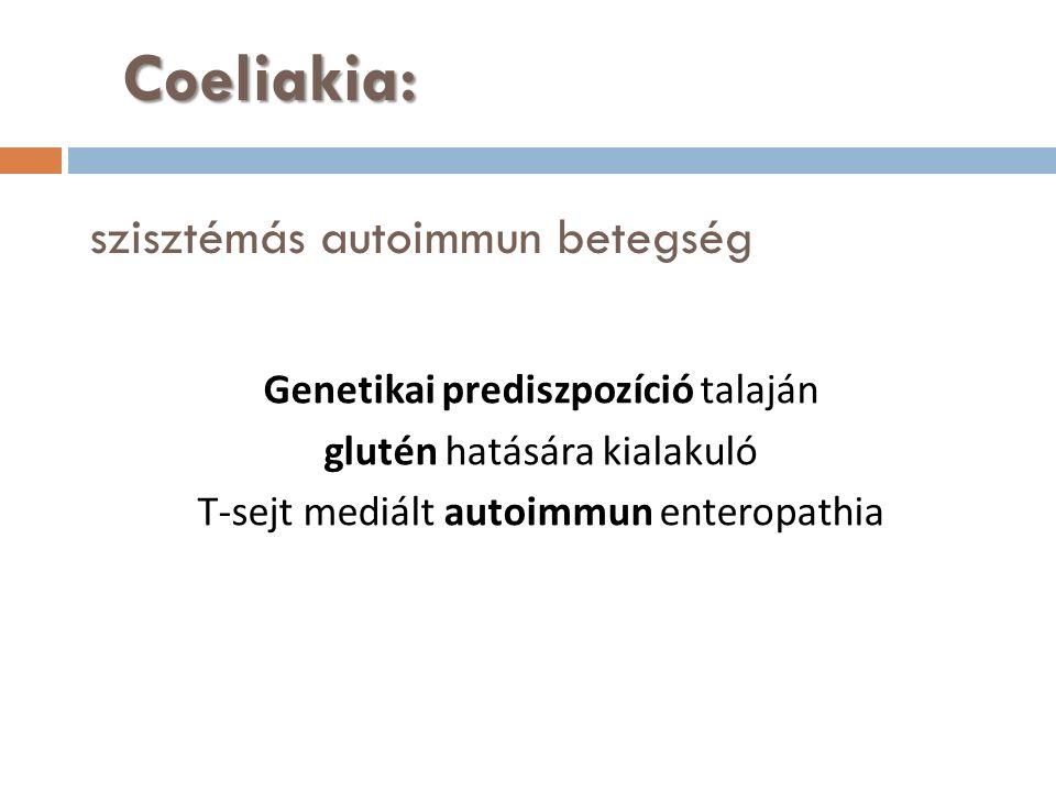 Coeliakia: Coeliakia: szisztémás autoimmun betegség Genetikai prediszpozíció talaján glutén hatására kialakuló T-sejt mediált autoimmun enteropathia