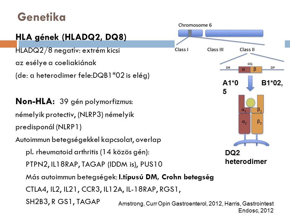 Genetika HLA gének (HLADQ2, DQ8) HLADQ2/8 negatív: extrém kicsi az esélye a coeliakiának (de: a heterodimer fele:DQB1*02 is elég) Non-HLA: 39 gén polymorfizmus: némelyik protectiv, (NLRP3) némelyik predisponál (NLRP1) Autoimmun betegségekkel kapcsolat, overlap pl.