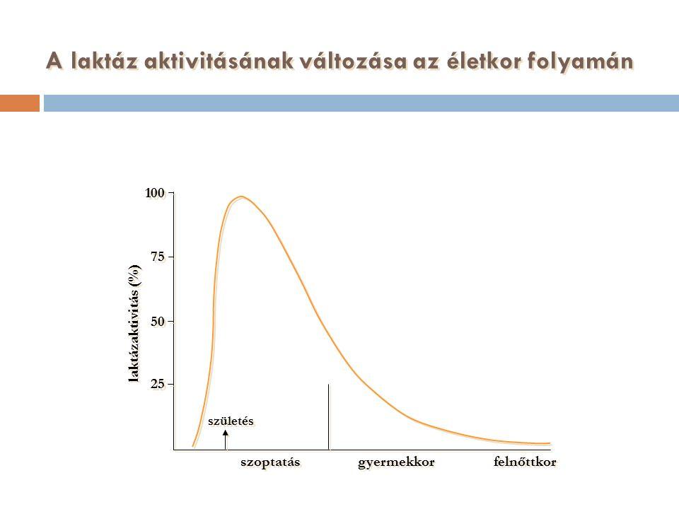 A laktáz aktivitásának változása az életkor folyamán szoptatás gyermekkor felnőttkor születés 100 75 50 25 laktázaktivitás (%)