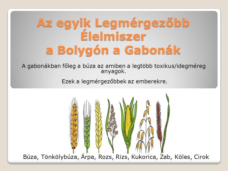 Az egyik Legmérgezőbb Élelmiszer a Bolygón a Gabonák A gabonákban főleg a búza az amiben a legtöbb toxikus/idegméreg anyagok.