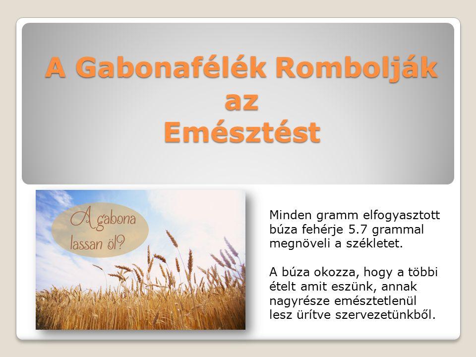 A Gabonafélék Rombolják az Emésztést Minden gramm elfogyasztott búza fehérje 5.7 grammal megnöveli a székletet.