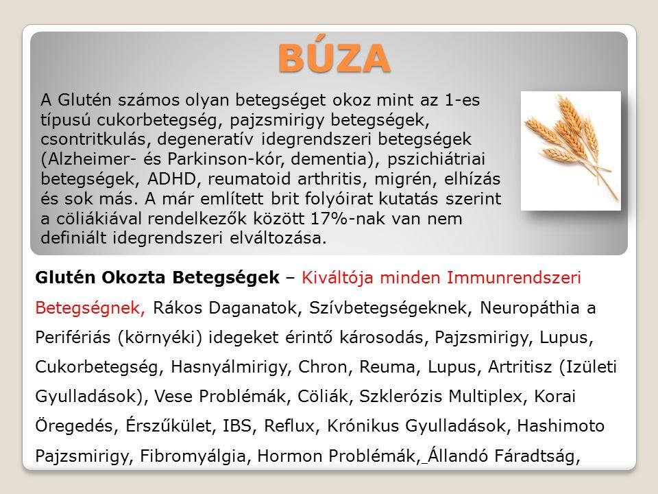 BÚZA Glutén Okozta Betegségek – Kiváltója minden Immunrendszeri Betegségnek, Rákos Daganatok, Szívbetegségeknek, Neuropáthia a Perifériás (környéki) idegeket érintő károsodás, Pajzsmirigy, Lupus, Cukorbetegség, Hasnyálmirigy, Chron, Reuma, Lupus, Artritisz (Izületi Gyulladások), Vese Problémák, Cöliák, Szklerózis Multiplex, Korai Öregedés, Érszűkület, IBS, Reflux, Krónikus Gyulladások, Hashimoto Pajzsmirigy, Fibromyálgia, Hormon Problémák, Állandó Fáradtság, A Glutén számos olyan betegséget okoz mint az 1-es típusú cukorbetegség, pajzsmirigy betegségek, csontritkulás, degeneratív idegrendszeri betegségek (Alzheimer- és Parkinson-kór, dementia), pszichiátriai betegségek, ADHD, reumatoid arthritis, migrén, elhízás és sok más.