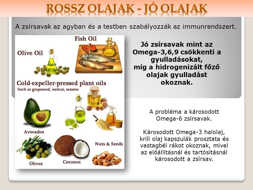 A zsírsavak az agyban és a testben szabályozzák az immunrendszert.