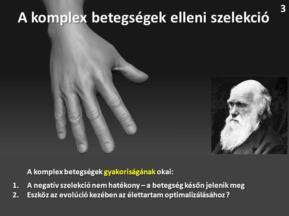 A komplex betegségek elleni szelekció A komplex betegségek gyakoriságának okai: 1.A negatív szelekció nem hatékony – a betegség későn jelenik meg 2.Eszköz az evolúció kezében az élettartam optimalizálásához .