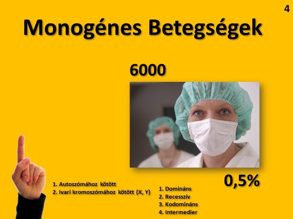 Monogénes Betegségek 6000 0,5% 1. Autoszómához kötött 2.
