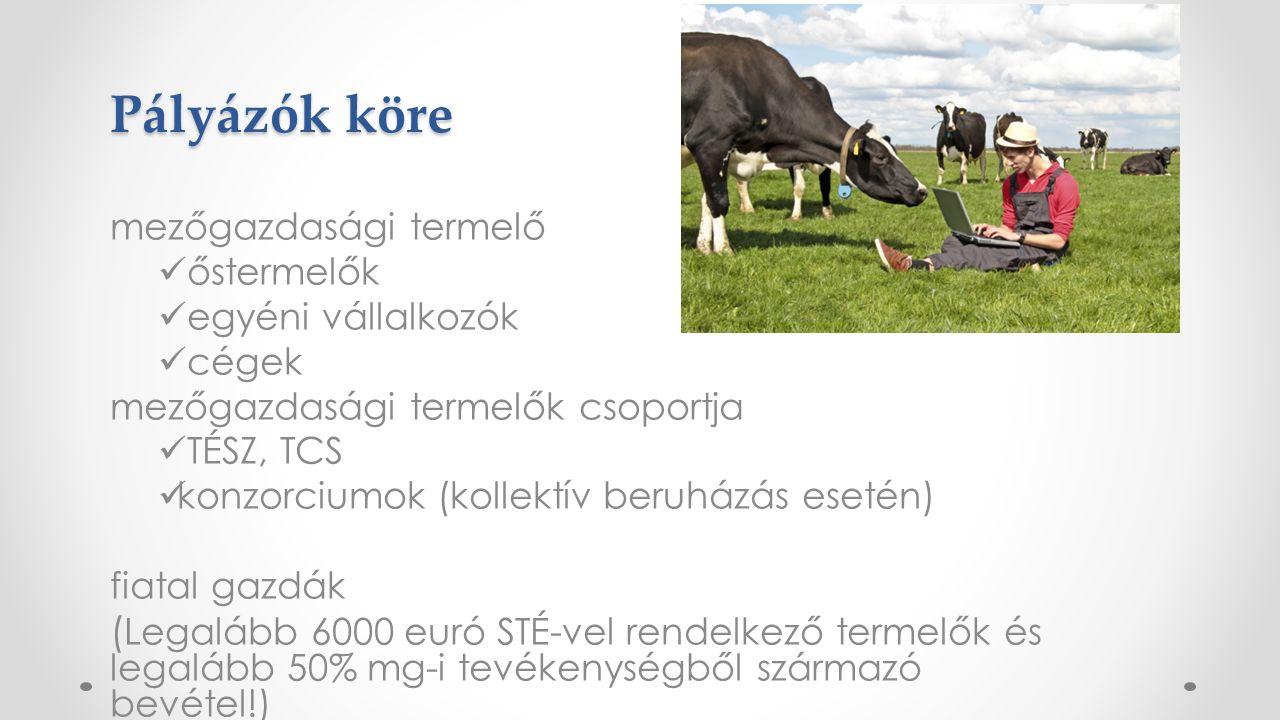 Pályázók köre mezőgazdasági termelő őstermelők egyéni vállalkozók cégek mezőgazdasági termelők csoportja TÉSZ, TCS konzorciumok (kollektív beruházás esetén) fiatal gazdák ( Legalább 6000 euró STÉ-vel rendelkező termelők és legalább 50% mg-i tevékenységből származó bevétel!)