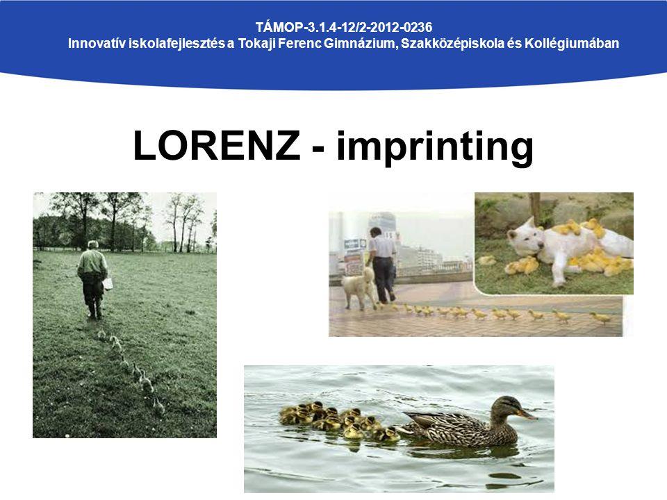LORENZ - imprinting TÁMOP-3.1.4-12/2-2012-0236 Innovatív iskolafejlesztés a Tokaji Ferenc Gimnázium, Szakközépiskola és Kollégiumában