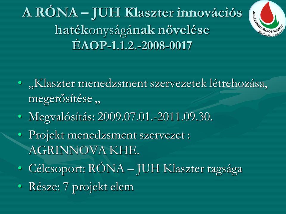 """A RÓNA – JUH Klaszter innovációs hatékonyságának növelése ÉAOP-1.1.2.-2008-0017 """"Klaszter menedzsment szervezetek létrehozása, megerősítése """"""""Klaszter menedzsment szervezetek létrehozása, megerősítése """" Megvalósítás: 2009.07.01.-2011.09.30.Megvalósítás: 2009.07.01.-2011.09.30."""