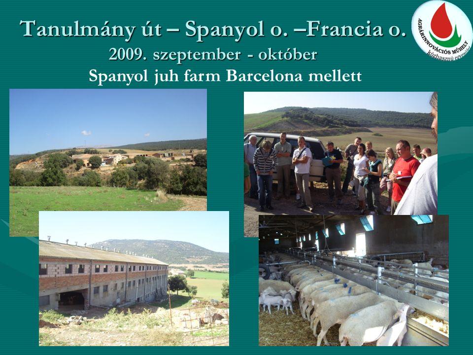 Tanulmány út – Spanyol o. –Francia o. 2009. szeptember - október Spanyol juh farm Barcelona mellett