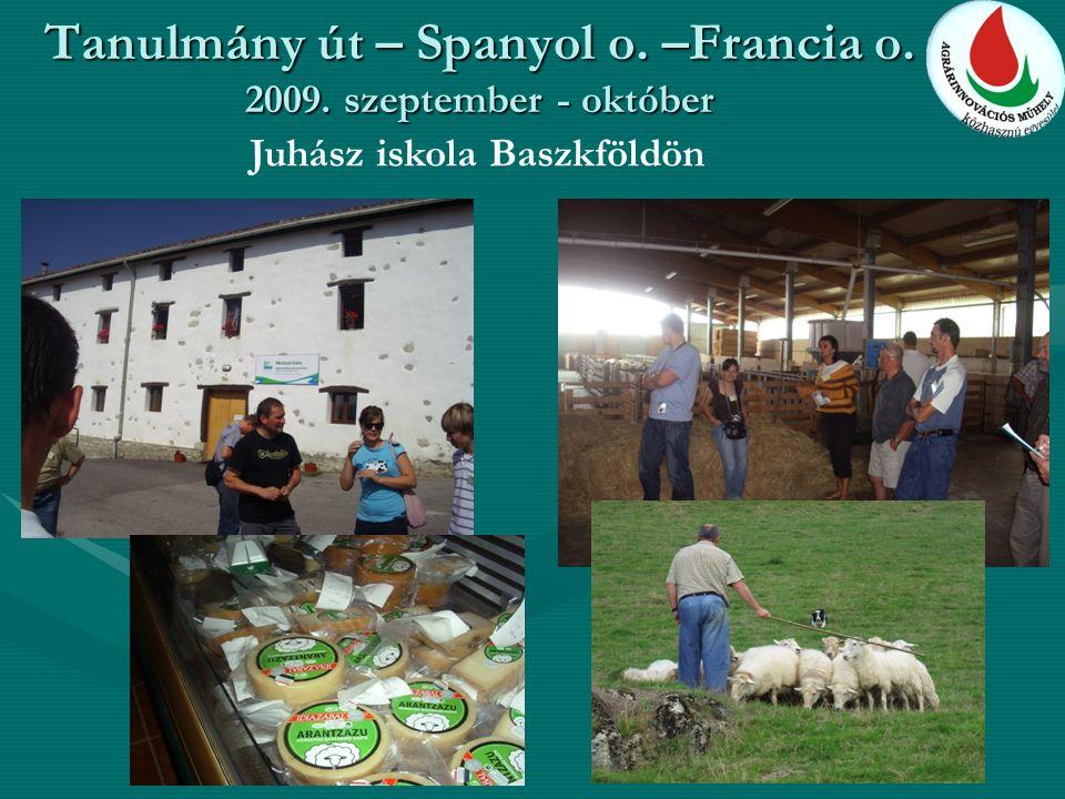 Tanulmány út – Spanyol o. –Francia o. 2009. szeptember - október Juhász iskola Baszkföldön