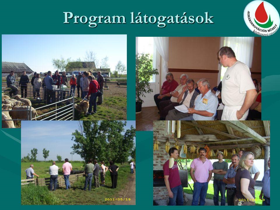 Program látogatások