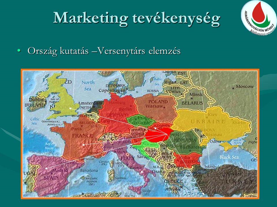 Marketing tevékenység Ország kutatás –Versenytárs elemzésOrszág kutatás –Versenytárs elemzés