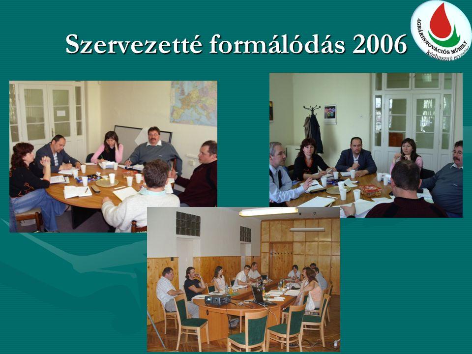 Szervezetté formálódás 2006
