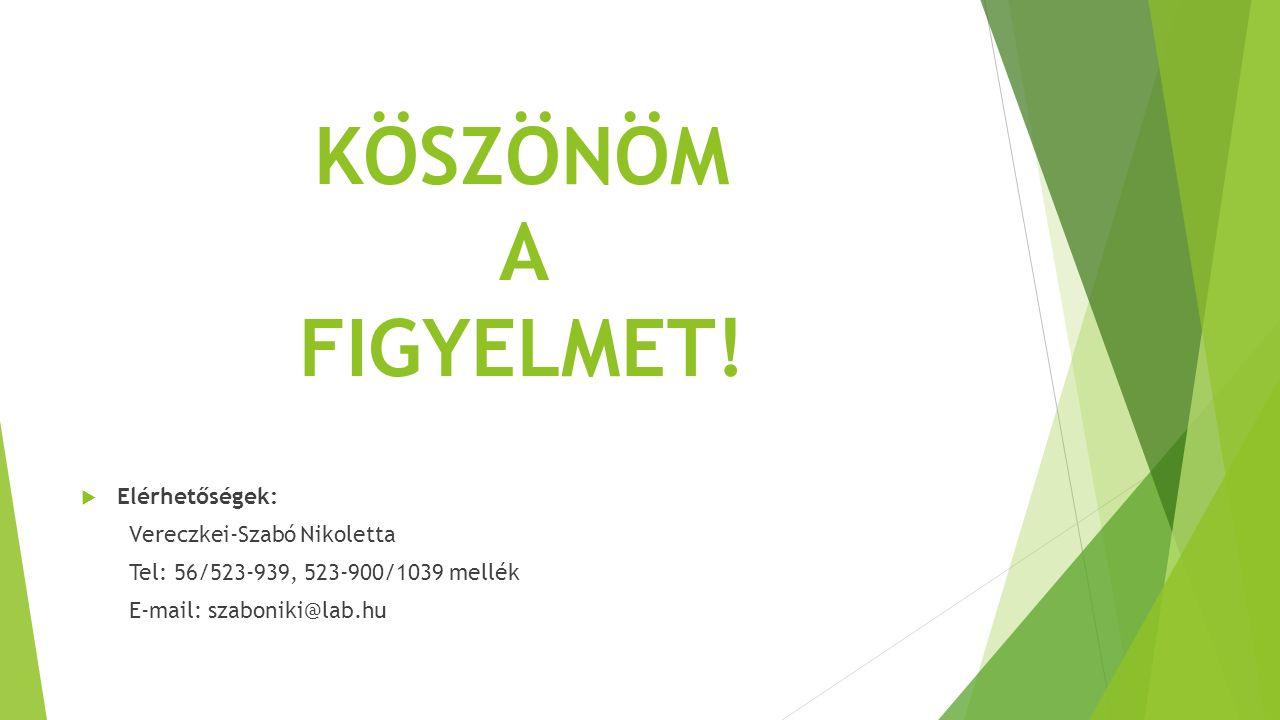 KÖSZÖNÖM A FIGYELMET!  Elérhetőségek: Vereczkei-Szabó Nikoletta Tel: 56/523-939, 523-900/1039 mellék E-mail: szaboniki@lab.hu
