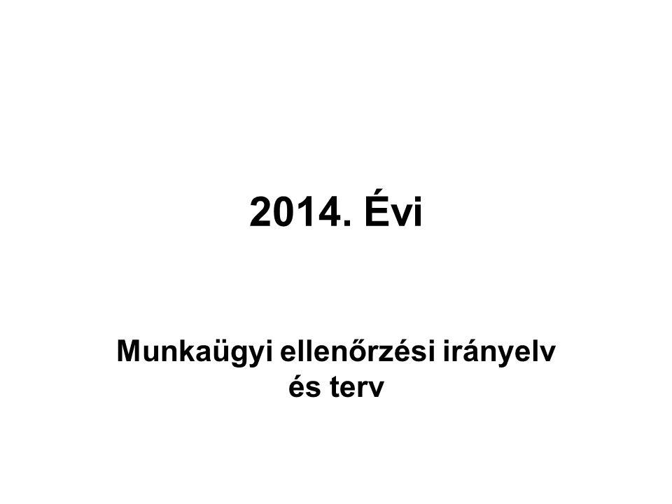 2014. Évi Munkaügyi ellenőrzési irányelv és terv