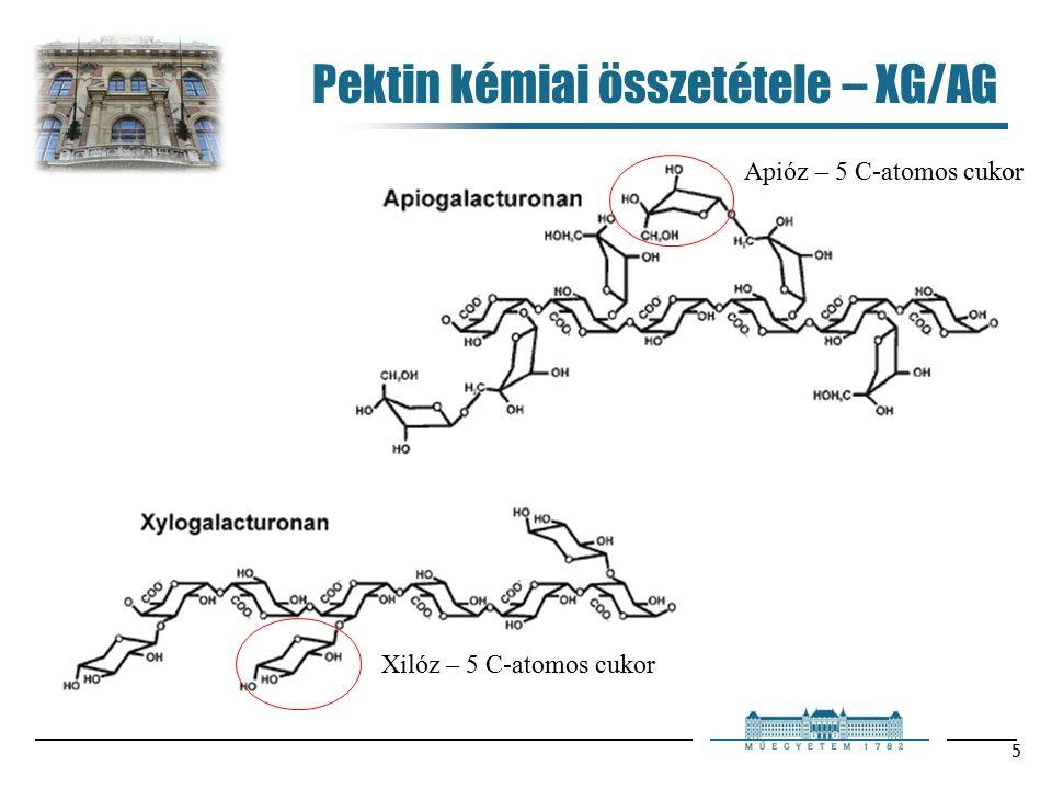 6 Pektin kémiai összetétele – RG-I Ramnóz – metilpentóz vagy 6-dezoxi-hexóz