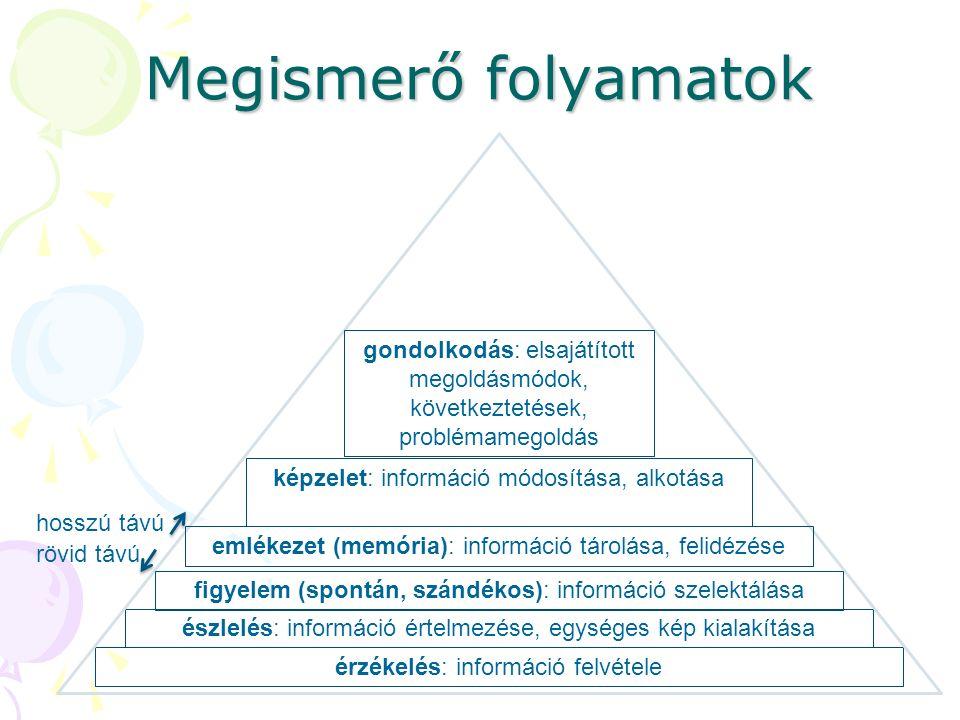 Megismerő folyamatok érzékelés: információ felvétele észlelés: információ értelmezése, egységes kép kialakítása figyelem (spontán, szándékos): információ szelektálása emlékezet (memória): információ tárolása, felidézése képzelet: információ módosítása, alkotása gondolkodás: elsajátított megoldásmódok, következtetések, problémamegoldás hosszú távú rövid távú