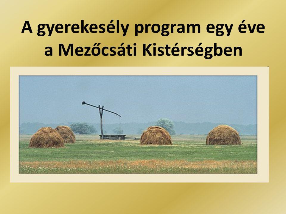 Mezőcsáti Kistérség Létrejötte kiválás a Mezőkövesdi és Tiszaújvárosi kistérségekből 2004.
