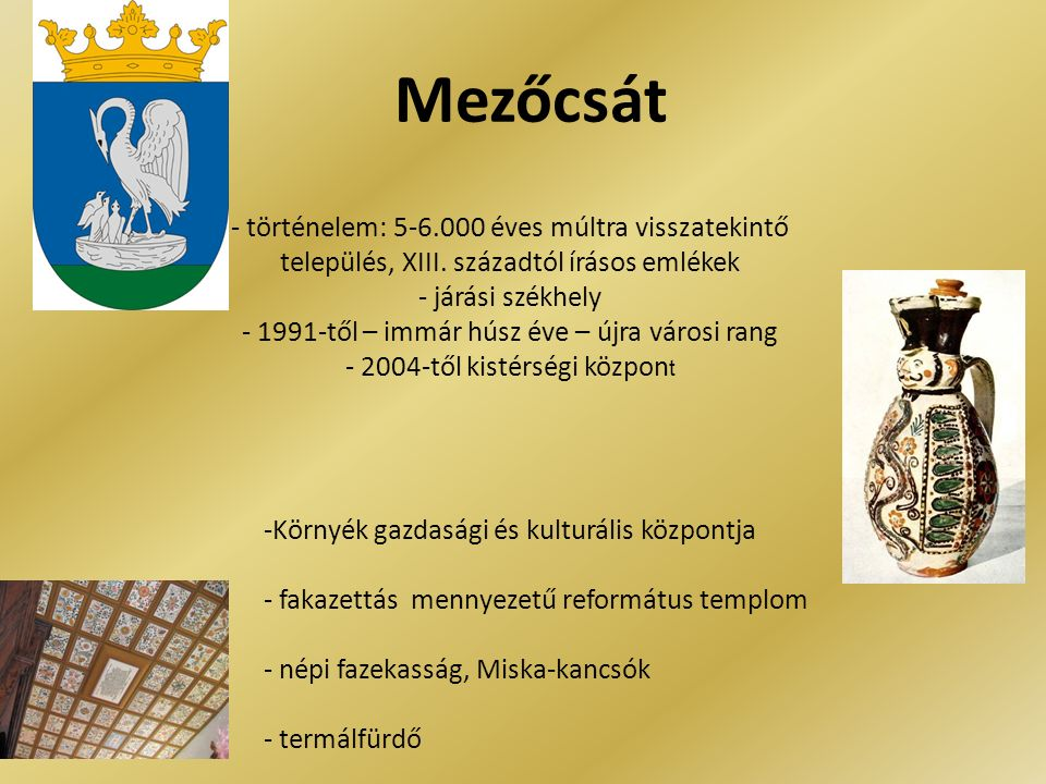 Mezőcsát - történelem: 5-6.000 éves múltra visszatekintő település, XIII.
