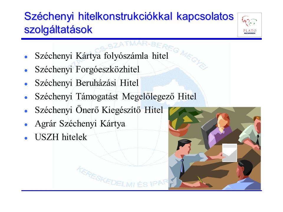 Széchenyi hitelkonstrukciókkal kapcsolatos szolgáltatások Széchenyi Kártya folyószámla hitel Széchenyi Forgóeszközhitel Széchenyi Beruházási Hitel Széchenyi Támogatást Megelőlegező Hitel Széchenyi Önerő Kiegészítő Hitel Agrár Széchenyi Kártya USZH hitelek