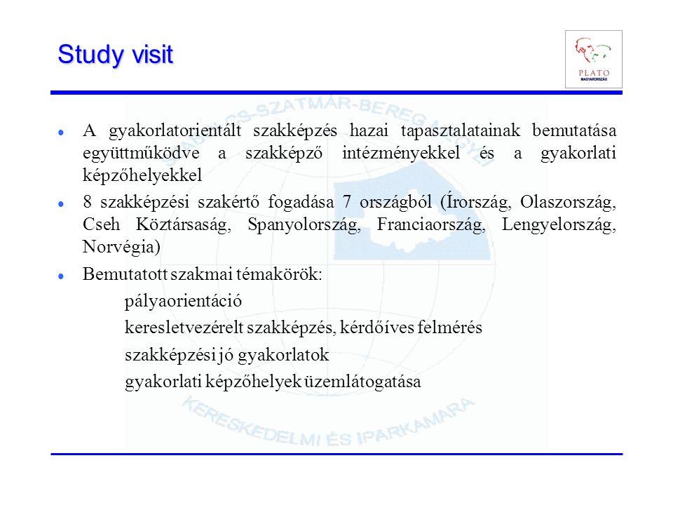 Study visit A gyakorlatorientált szakképzés hazai tapasztalatainak bemutatása együttműködve a szakképző intézményekkel és a gyakorlati képzőhelyekkel 8 szakképzési szakértő fogadása 7 országból (Írország, Olaszország, Cseh Köztársaság, Spanyolország, Franciaország, Lengyelország, Norvégia) Bemutatott szakmai témakörök: pályaorientáció keresletvezérelt szakképzés, kérdőíves felmérés szakképzési jó gyakorlatok gyakorlati képzőhelyek üzemlátogatása