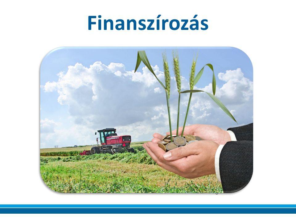 Finanszírozás 5