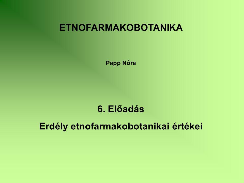 ETNOFARMAKOBOTANIKA Papp Nóra 6. Előadás Erdély etnofarmakobotanikai értékei