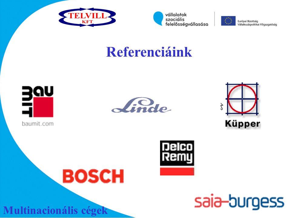 Multinacionális cégek Referenciáink