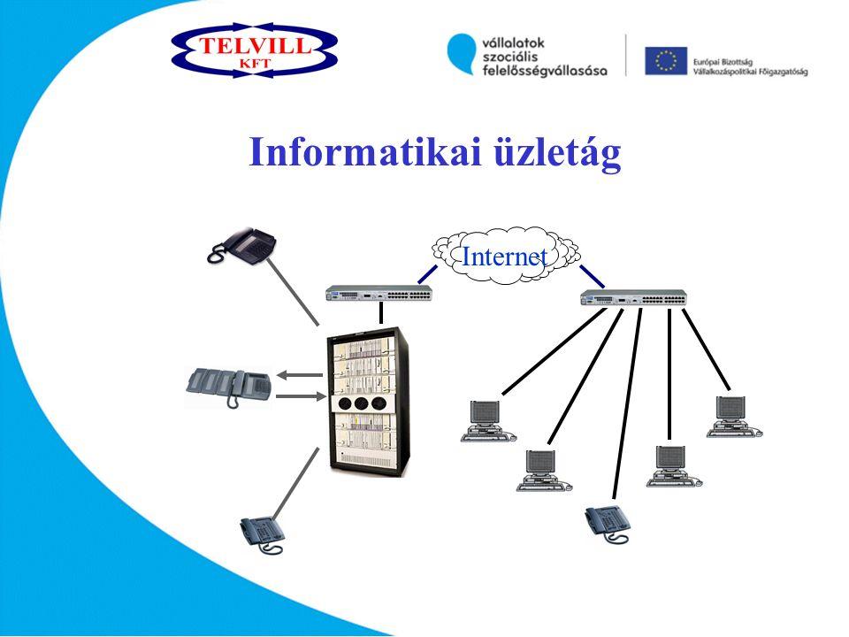 Internet Informatikai üzletág