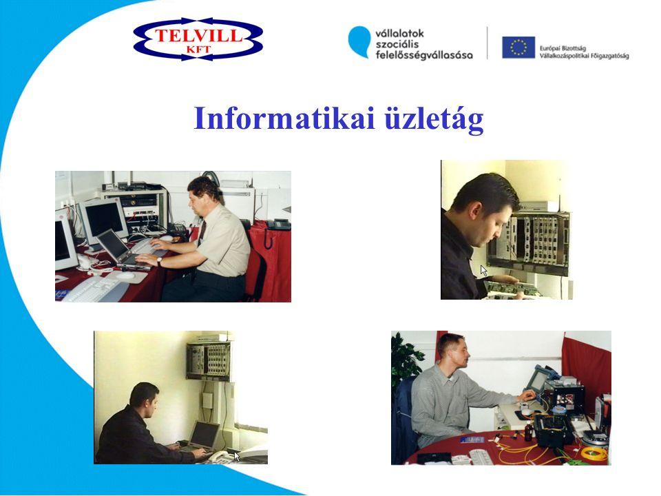 Informatikai üzletág