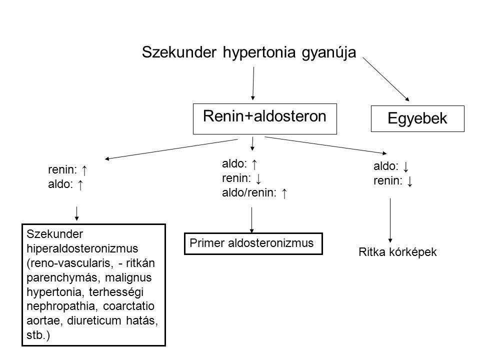 Renin+aldosteron aldo: ↑ renin: ↓ aldo/renin: ↑ renin: ↑ aldo: ↑ aldo: ↓ renin: ↓ Ritka kórképek Primer aldosteronizmus Szekunder hiperaldosteronizmus (reno-vascularis, - ritkán parenchymás, malignus hypertonia, terhességi nephropathia, coarctatio aortae, diureticum hatás, stb.) Szekunder hypertonia gyanúja Egyebek