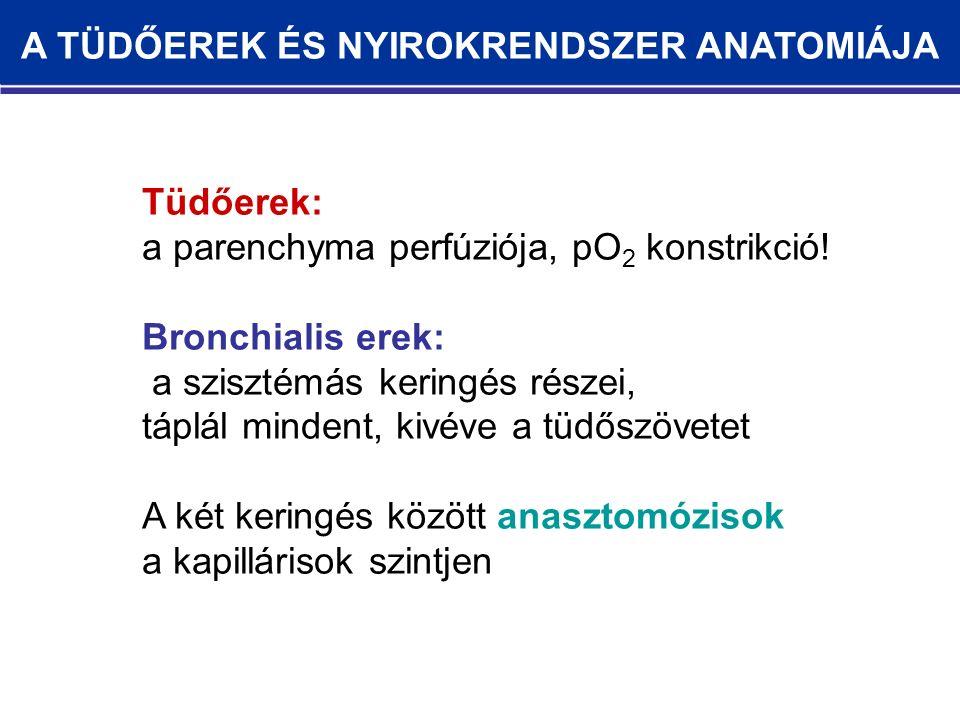 Tüdőerek: a parenchyma perfúziója, pO 2 konstrikció.