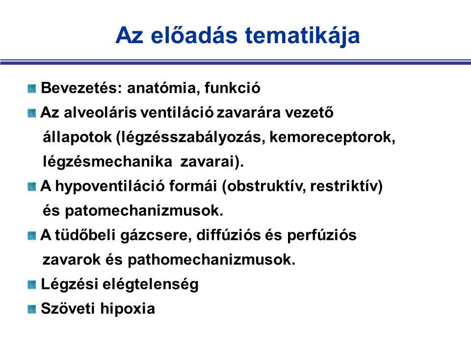 Az előadás tematikája Bevezetés: anatómia, funkció Az alveoláris ventiláció zavarára vezető állapotok (légzésszabályozás, kemoreceptorok, légzésmechanika zavarai).