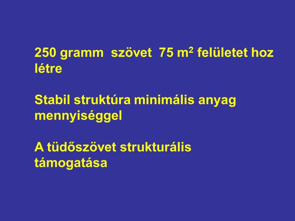 250 gramm szövet 75 m 2 felületet hoz létre Stabil struktúra minimális anyag mennyiséggel A tüdőszövet strukturális támogatása