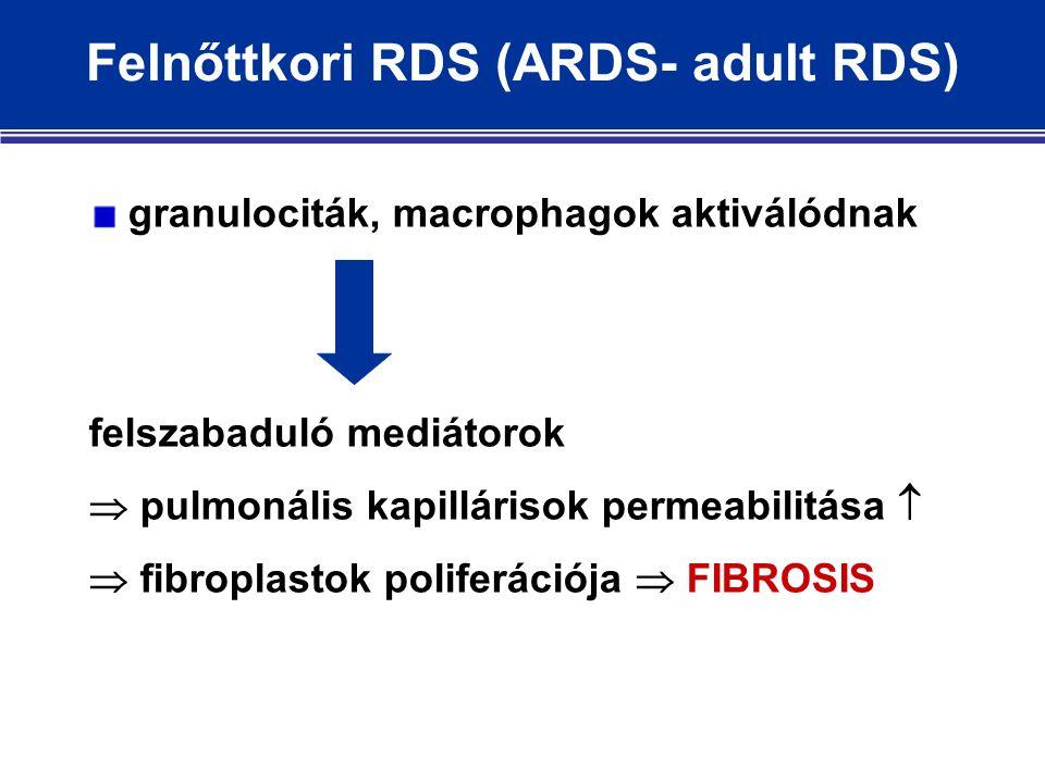 granulociták, macrophagok aktiválódnak felszabaduló mediátorok  pulmonális kapillárisok permeabilitása   fibroplastok poliferációja  FIBROSIS Felnőttkori RDS (ARDS- adult RDS)
