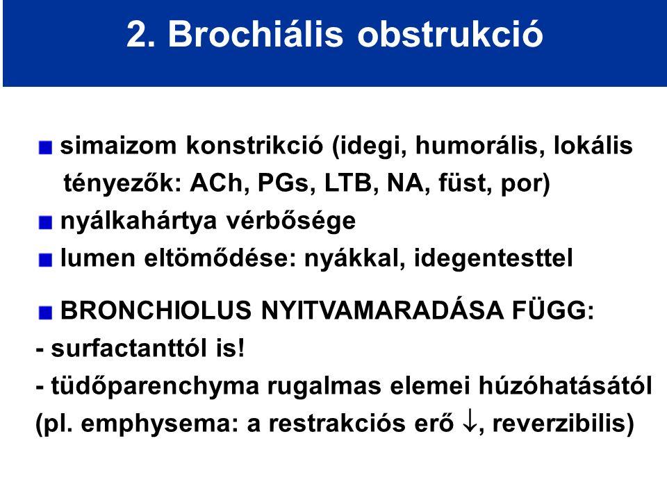 2. Brochiális obstrukció simaizom konstrikció (idegi, humorális, lokális tényezők: ACh, PGs, LTB, NA, füst, por) nyálkahártya vérbősége lumen eltömődé