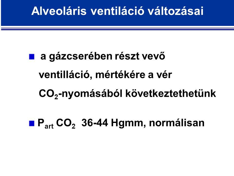 Alveoláris ventiláció változásai a gázcserében részt vevő ventilláció, mértékére a vér CO 2 -nyomásából következtethetünk P art CO 2 36-44 Hgmm, normálisan
