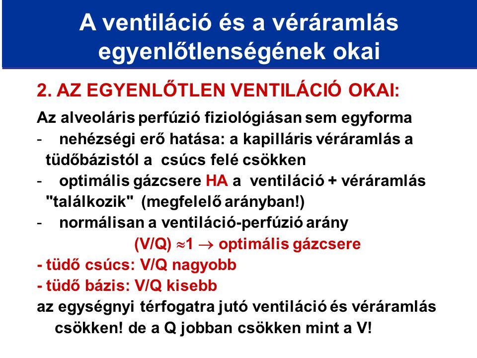 A ventiláció és a véráramlás egyenlőtlenségének okai 2.