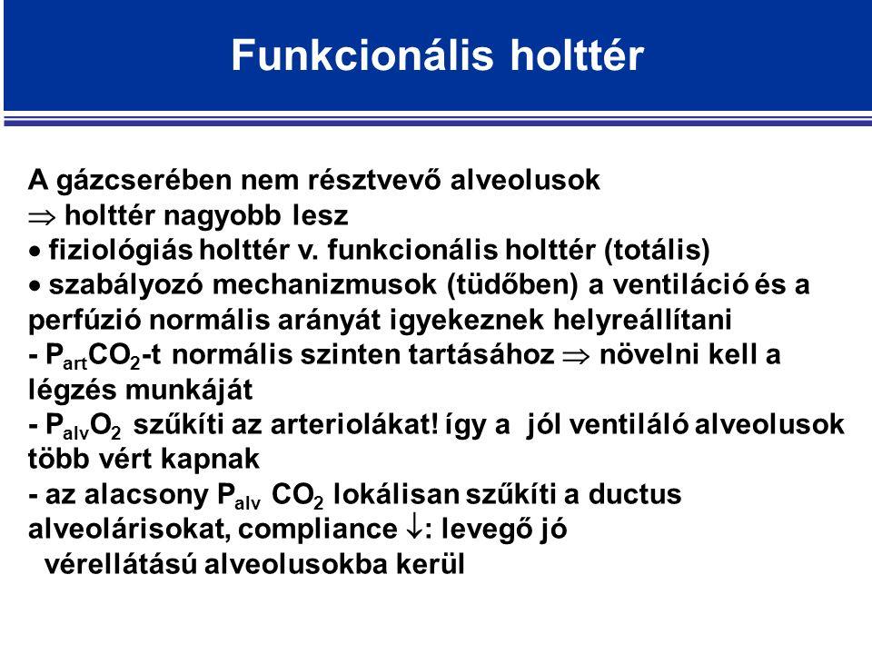Funkcionális holttér A gázcserében nem résztvevő alveolusok  holttér nagyobb lesz  fiziológiás holttér v.