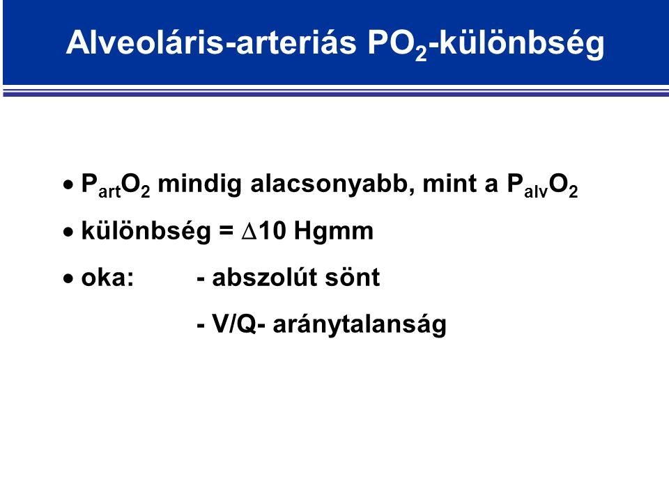 Alveoláris-arteriás PO 2 -különbség  P art O 2 mindig alacsonyabb, mint a P alv O 2  különbség =  10 Hgmm  oka:- abszolút sönt - V/Q- aránytalanság