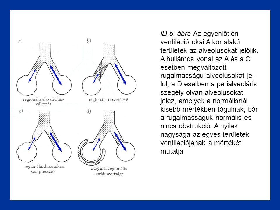 lD-5. ábra Az egyenlőtlen ventiláció okai A kör alakú területek az alveolusokat jelölik.