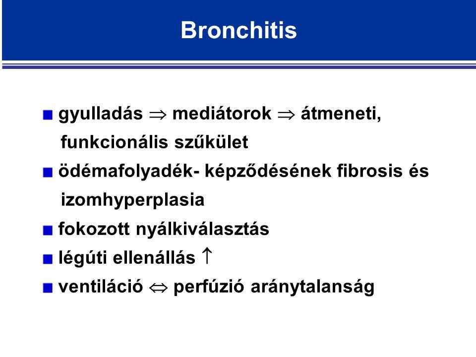 Bronchitis gyulladás  mediátorok  átmeneti, funkcionális szűkület ödémafolyadék- képződésének fibrosis és izomhyperplasia fokozott nyálkiválasztás légúti ellenállás  ventiláció  perfúzió aránytalanság