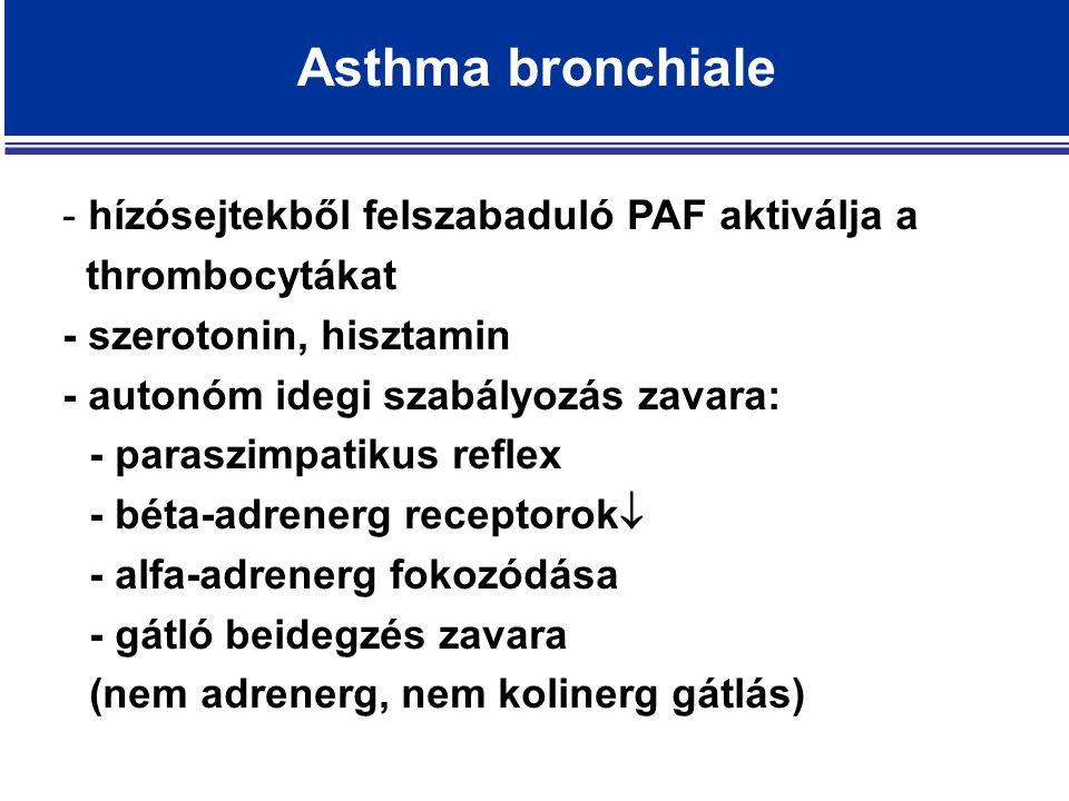 Asthma bronchiale - hízósejtekből felszabaduló PAF aktiválja a thrombocytákat - szerotonin, hisztamin - autonóm idegi szabályozás zavara: - paraszimpatikus reflex - béta-adrenerg receptorok  - alfa-adrenerg fokozódása - gátló beidegzés zavara (nem adrenerg, nem kolinerg gátlás)