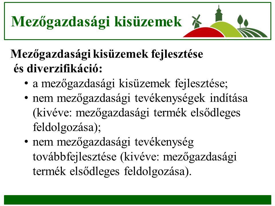 Mezőgazdasági kisüzemek Mezőgazdasági kisüzemek fejlesztése és diverzifikáció: a mezőgazdasági kisüzemek fejlesztése; nem mezőgazdasági tevékenységek indítása (kivéve: mezőgazdasági termék elsődleges feldolgozása); nem mezőgazdasági tevékenység továbbfejlesztése (kivéve: mezőgazdasági termék elsődleges feldolgozása).
