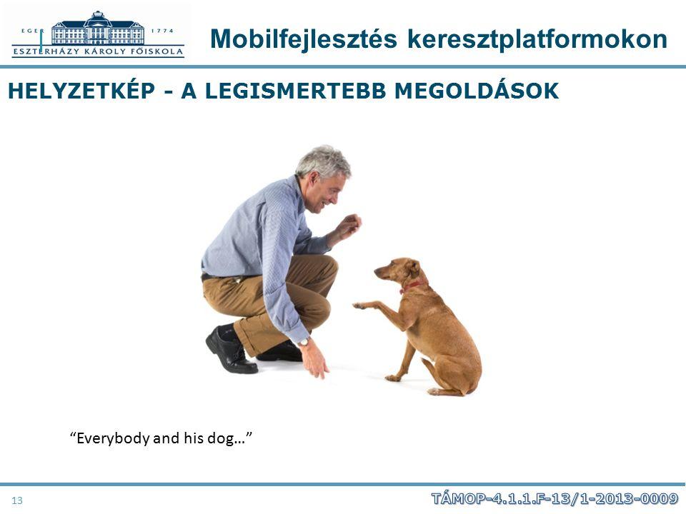 """Mobilfejlesztés keresztplatformokon 13 HELYZETKÉP - A LEGISMERTEBB MEGOLDÁSOK """"Everybody and his dog…"""""""