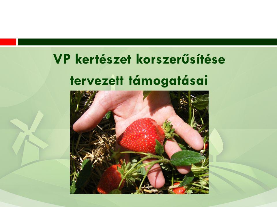 VP kertészet korszerűsítése tervezett támogatásai