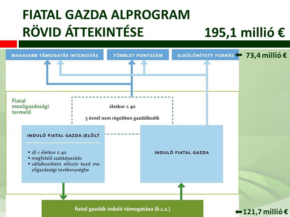 FIATAL GAZDA ALPROGRAM RÖVID ÁTTEKINTÉSE 195,1 millió € 73,4 millió € 121,7 millió €