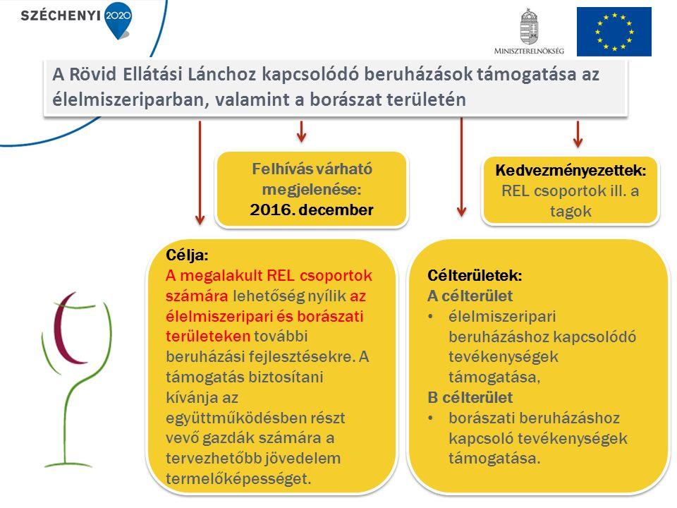Célja: A megalakult REL csoportok számára lehetőség nyílik az élelmiszeripari és borászati területeken további beruházási fejlesztésekre.